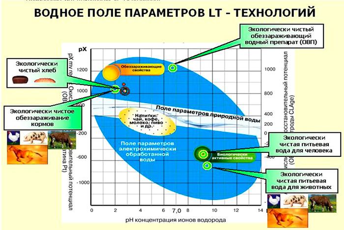 Целевая крупномасштабная программа Горизонт по производству и эксплуатации аэропонных систем нового поколения